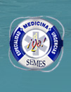 SEMES logo